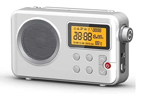 Radio NK-AB1904 FM / AM - Radio Portátil de Sobremesa, Pantalla LCD con Luz, Antena,...
